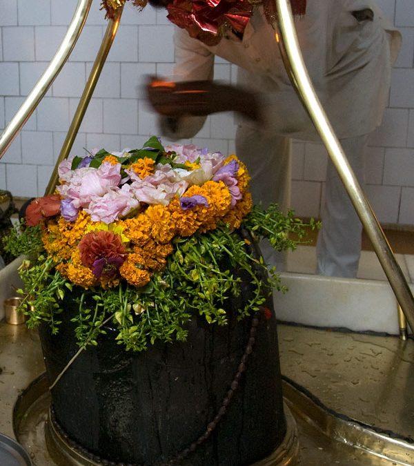 Maha Shivaratri Program,February 24, 2017